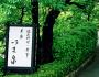 茶寮いま泉
